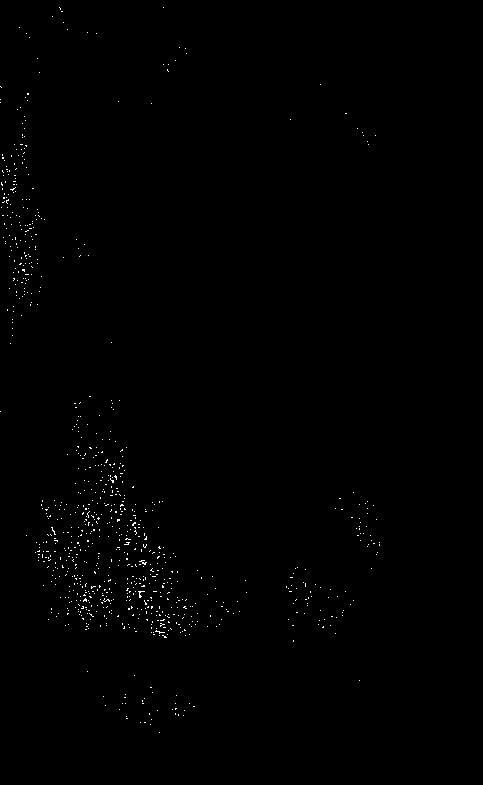 eben prdeli velkým černým kohoutem